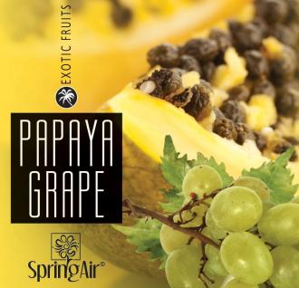 SPRING AIR NÁPLŇ DO OSVIEŽOVAČA GRAPE-PAPAYA - SPRAY 250ML