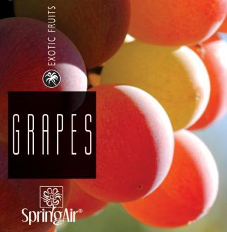 SPRING AIR NÁPLŇ DO OSVIEŽOVAČA GRAPES - SPRAY 250ML