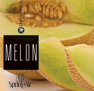 SPRING AIR NÁPLŇ DO OSVIEŽOVAČA MELON - SPRAY 250ML