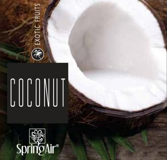 SPRING AIR NÁPLŇ DO OSVIEŽOVAČA COCONUT - SPRAY 250ML