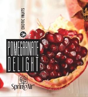 SPRING AIR NÁPLŇ PRE CRYPTOSCENT - POMEGRANATE DELIGHT 1000ML